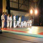 GALA d'ARTS MARTIAUX à Villeneuve/Yonne le 5 Fevrier en soirée